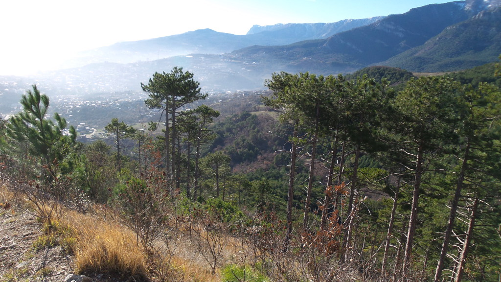 Вид на Ялту с высоты 400 м над уровнем моря.