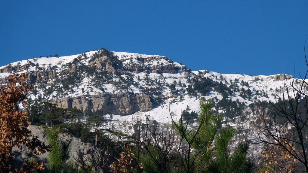 Гора Джунын-Кош 1410 м.