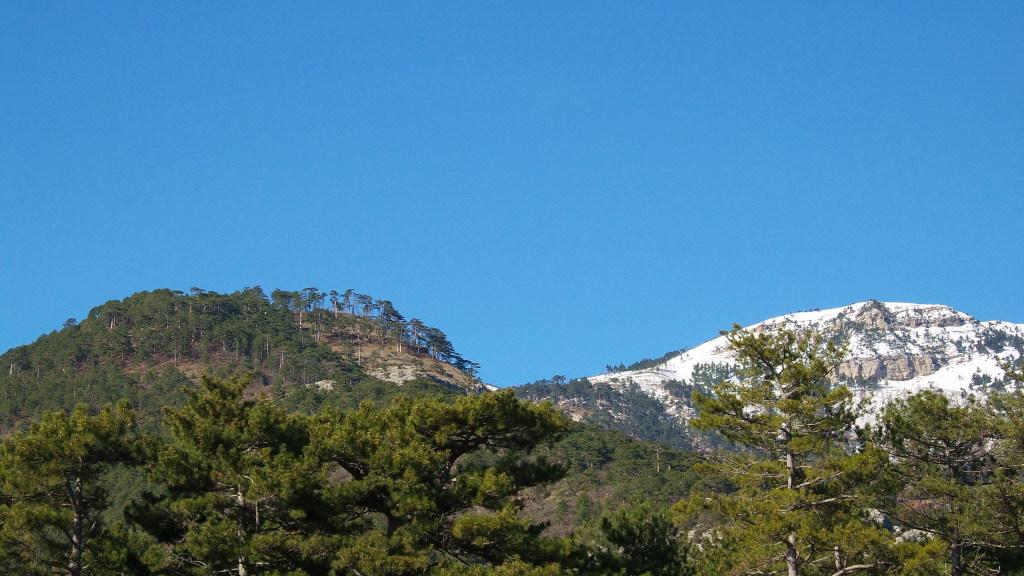 Две горных вершины. Слева хр. Баланын-Каясы, справа г. Джунын-Кош.